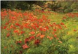 Cottage paintings - In Poppyland by John Ottis Adams