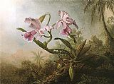 Martin Johnson Heade Orchids and Hummingbird 1875 painting
