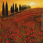 Steve Thoms Poppies i painting