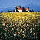 Steve Thoms Sunflower Field painting