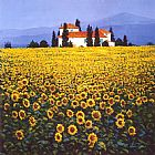 Steve Thoms Sunflowers Field painting